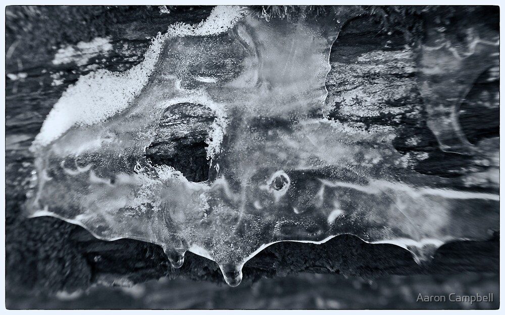 Ice in Detail by Aaron Campbell