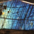 Labradorite - Paints its own picture by Louise Linossi Telfer