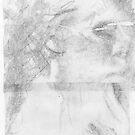 Portrait Study. by Andy Nawroski