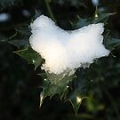 Heart of Ice by Mark Smitham