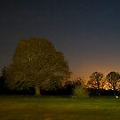 Last Light by WhartonWizard