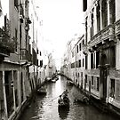 Venice by Louise Fahy