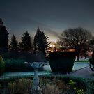 Secret Garden by WhartonWizard