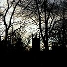 Cathedral - A Silhouette  by rsangsterkelly