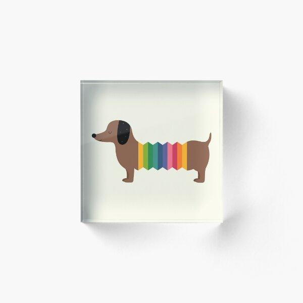 Rainbow Dooooog Acrylic Block