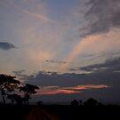 Ugandan Sky II by Stephen Monro