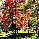 Autumn hues © by Dawn Becker