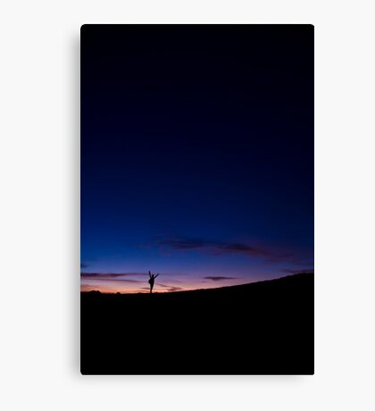 To the infinity Canvas Print