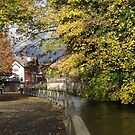 BY THE RIVER -WINCHESTER-AUTUMN by keithbutcher