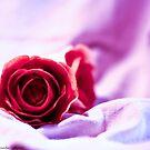Untitled Gumpaste Roses by vanyahaheights