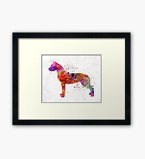 Dogo Argentino in watercolor Framed Print