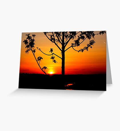 Sunset on The Snake River-Twin Falls Idaho, USA Greeting Card
