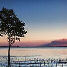Smoky horizon.  by DaveBassett