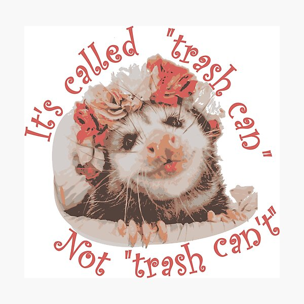 Trash Can't Possum Photographic Print