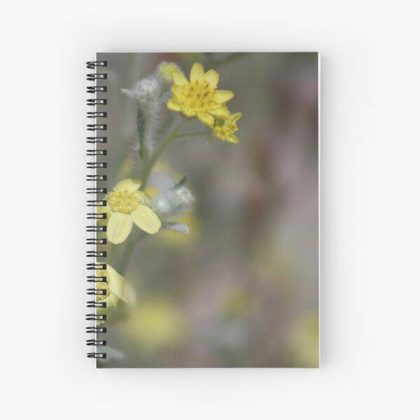 Closeup Of Yellow Wildflowers At Coachella Wildlife Preserve Spiral Notebook