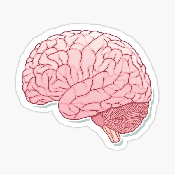 pinky brain Sticker
