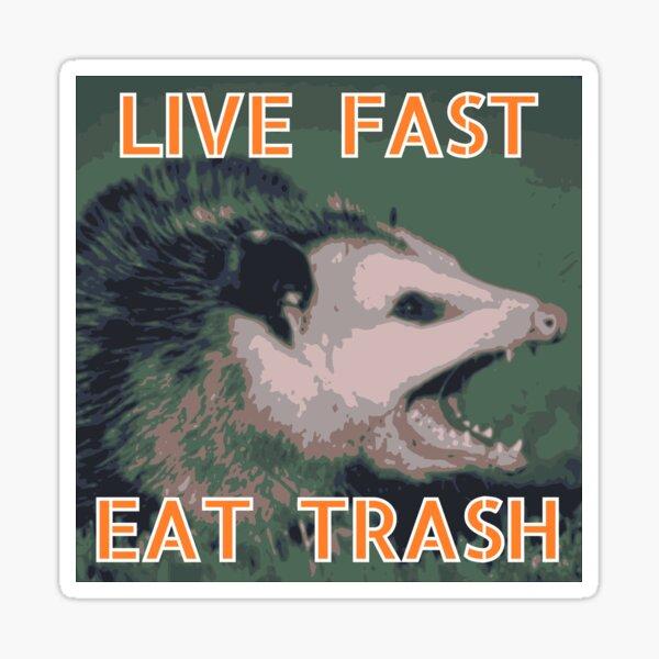 Live Fast, Eat Trash Sticker