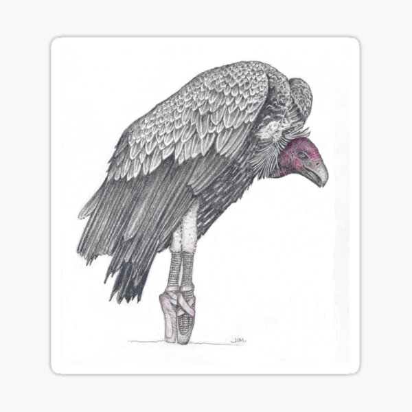 Vulture in toe shoes Sticker