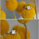 Rings by for the love photography