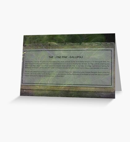 North Head Manly - The Lone Pine Greeting Card
