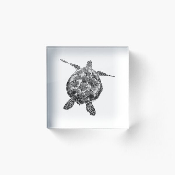 Jacki the Turtle Acrylic Block