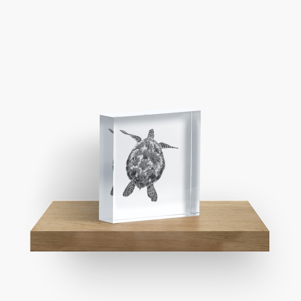 Jacki the Turtle Acrylic Block