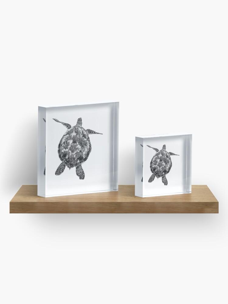 Alternate view of Jacki the Turtle Acrylic Block