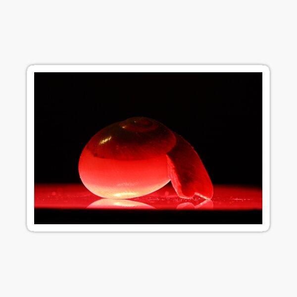 Red Snails After Sunset Sticker