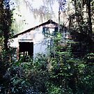 Once Upon a Time, There was a House in the Forest by Caren