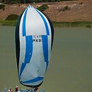Milang-Goolwa Freshwater Classic 2012  by SusanAdey