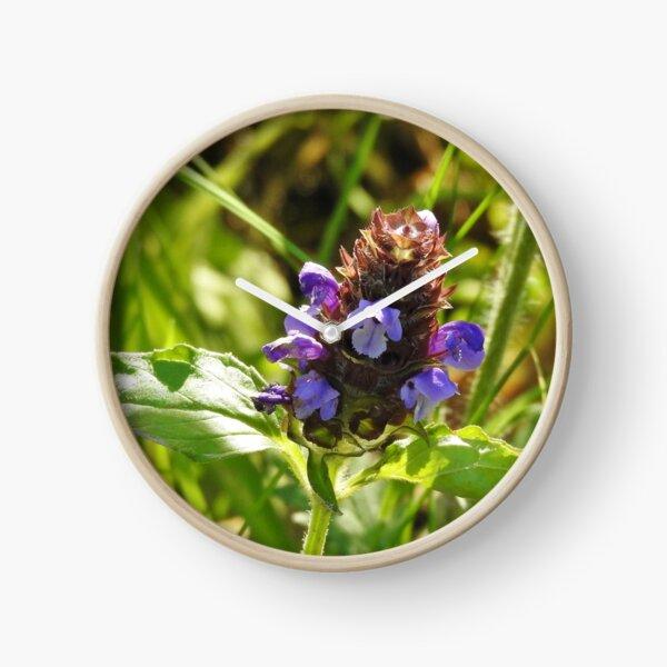 Self Heal Wildflower Clock