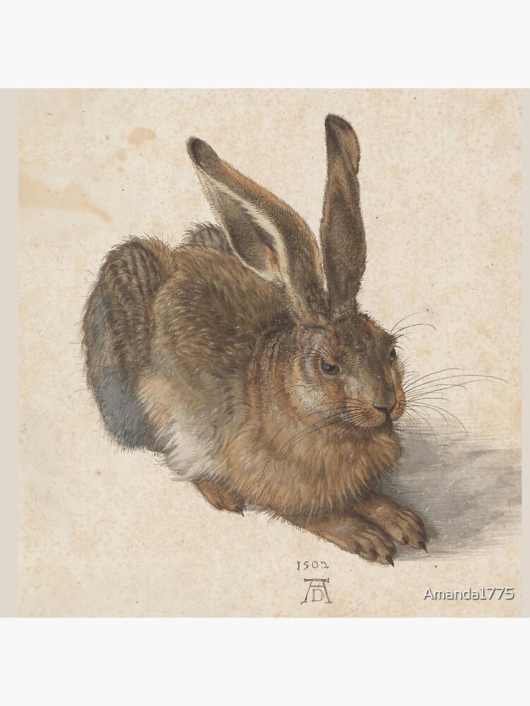 Young Hare  by Albrecht Dürer by Amanda1775