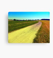 Lonely countryside gravel road Canvas Print