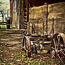 Old Amish Wagon by Marcia Rubin