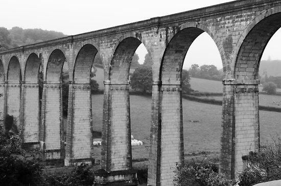 Calstock Viaduct, Cornwall by Ross Buchanan