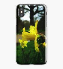 tears of nature iPhone Case