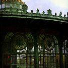 The Empty Carousel House by Debra Fedchin