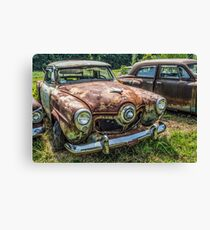 Optimized Oxidation Canvas Print