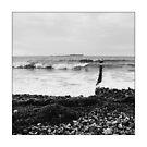 Baltic Waves 4 by Falko Follert