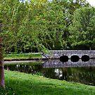 The Small Bridge On Verona Lake by Jane Neill-Hancock