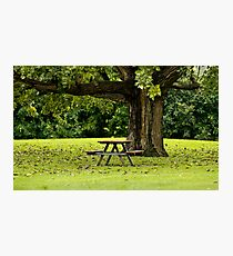 ~Come sit with me~  Photographic Print