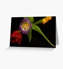 Tulips from above Greeting Card