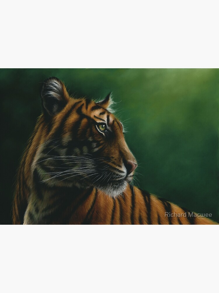 Wildlife Painting of a Tiger by richardmacwee