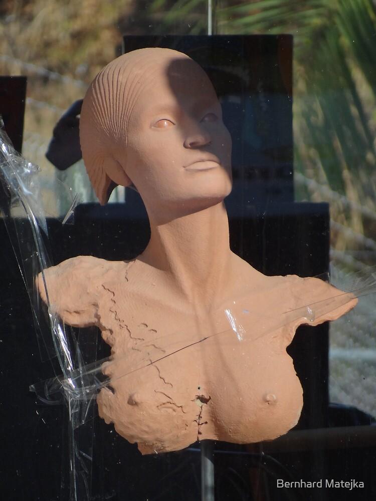 Who Destroyed My Window - Quien Destruió Mi Ventana by Bernhard Matejka