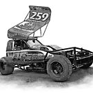 #259 Paul Hines - Brisca F1 Stock Car by Neil Bedwell