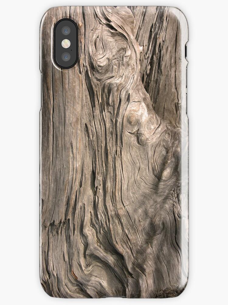 Kauri Wood by VanOostrum