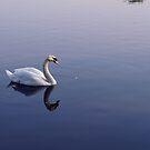 Serenity by Lennox George