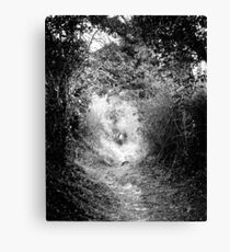 The Fairy Pathway (35mm) Canvas Print