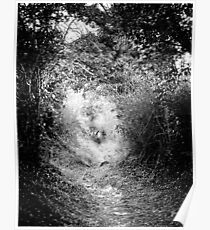 The Fairy Pathway (35mm) Poster