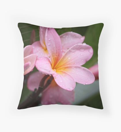 The Rains Are Here: Pink Frangipani Throw Pillow